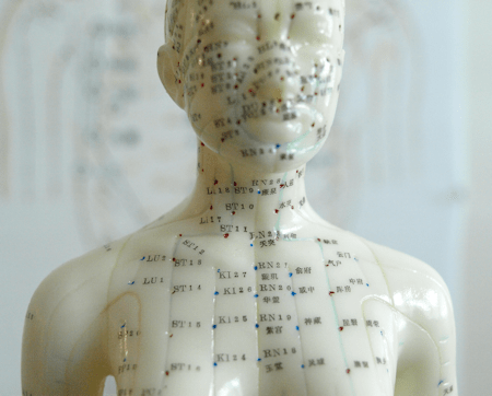 Acupressure Points Chart Model head and chest points