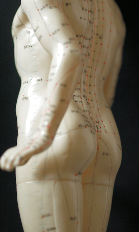Male Acupressure model back