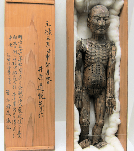 Traditional Japanese Acupuncture Model from Edo period acupuncturist