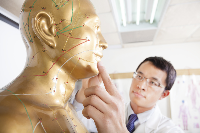 chinese medicine acupuncture doctor showing acupoint model