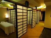 Shiatsu_Section_View_2